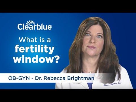 What Is a Fertility Window?