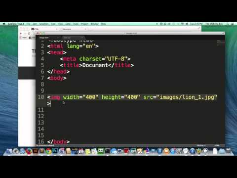 HTML Tutorial   How to Make an Image Clickable   Link on Image   Easy   Beginner