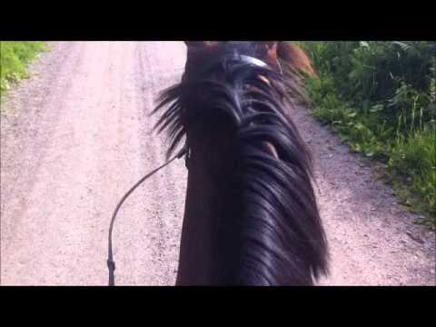 120720 sitting on horse with headshaking