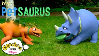 🦖My Petsaurus   Dinosaur Compilation   20 mins+   CBeebies