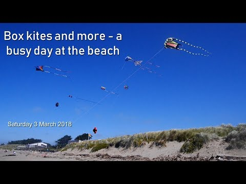 Box kites and more - a busy day at the beach