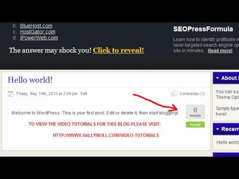 TweetMeMe Twitter Wordpress Blog Plugin Installation Video