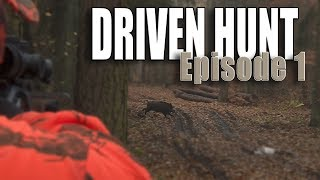 Driven hunt episode 1 - Wild boar & deer at Lutowko - Drückjagd - Drevjakt