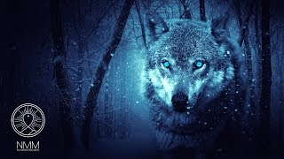 """Native American Flute Music: """"Wolf Instinct"""", Meditation Music for Shamanic Astral Projection 41804N"""