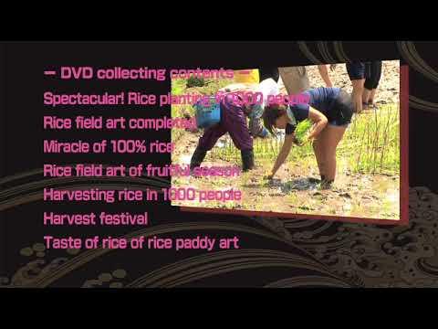 RICE PADDY ART DVD ~MAKE JAPAN SERIES~