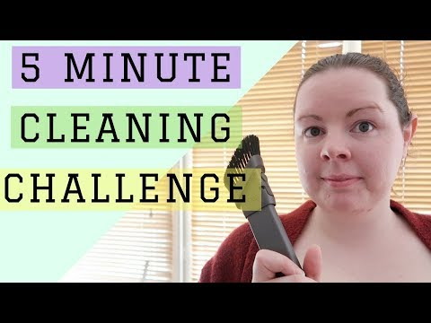 5 MINUTE CLEANING CHALLENGE || CLEANING WOODEN BLINDS