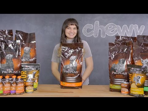 Purina Pro Plan Savor for Dogs