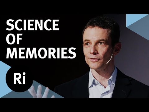What Makes a Memory Come Alive? - with Jon Simons