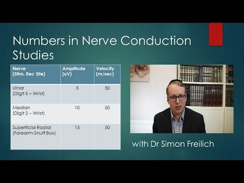 Numbers in Clinical Neurophysiology