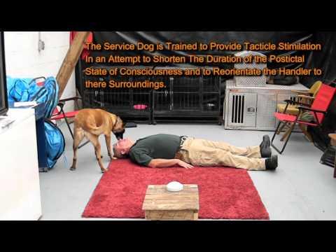 Seizure Response Video