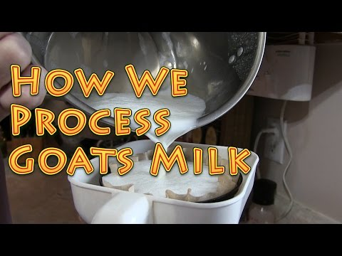 How To Process Goats Milk