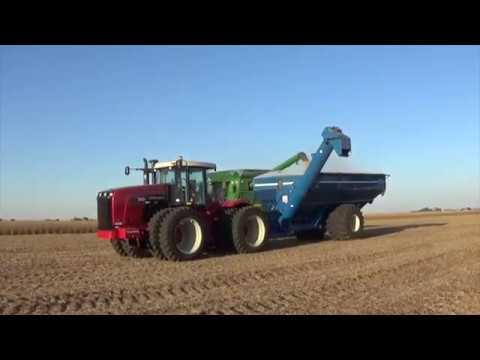 Northern Illinois Soybean Harvest