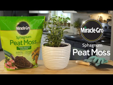 How to Use Miracle-Gro® Sphagnum Peat Moss In Your Planting Containers