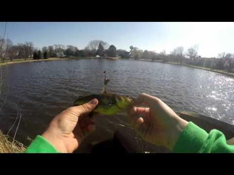 Bullhead Fishing at a Secret Spot