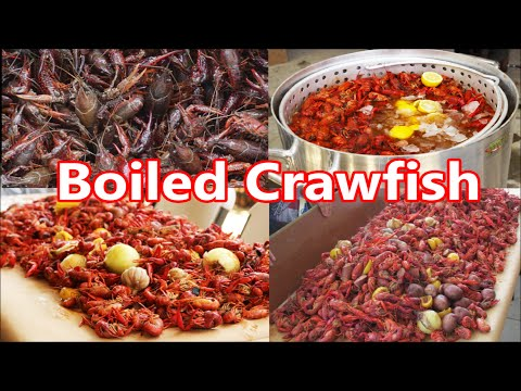 Louisiana Style Crawfish Boiling Party