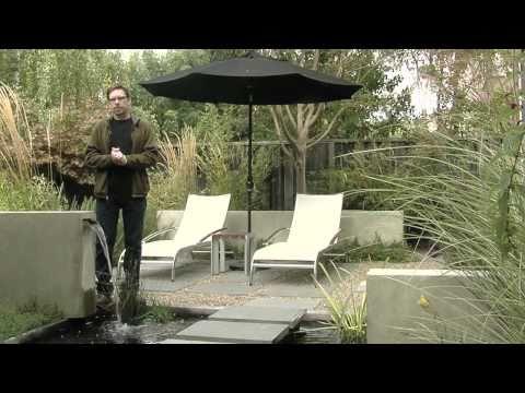 Pond Design & Ideas for Concrete Ponds