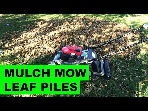 Mulch Mowing Piles of Leaves with the Honda HRX217