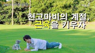 홍혜걸의 굳은땅 #11 천고마비의 계절, 근육을 키우자!