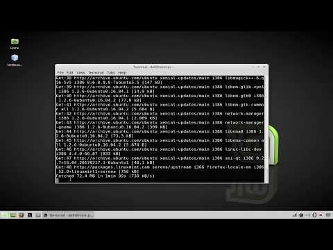 How to update and upgrade packages on linux mint
