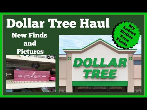 New Dollar Tree Haul 🤑and Pictures