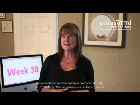 38 Weeks Pregnant - Your 38th Week Of Pregnancy