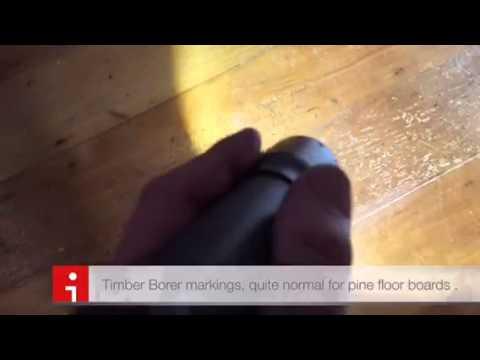 Timber borers