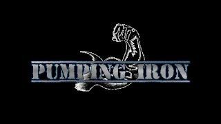 Skyrim SE Mod : Pumping Iron