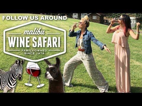 Malibu Safari Wine Tour