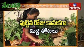Birthday Gift for his Daughter | Terrace Gardening by Jeevan Reddy | hmtv