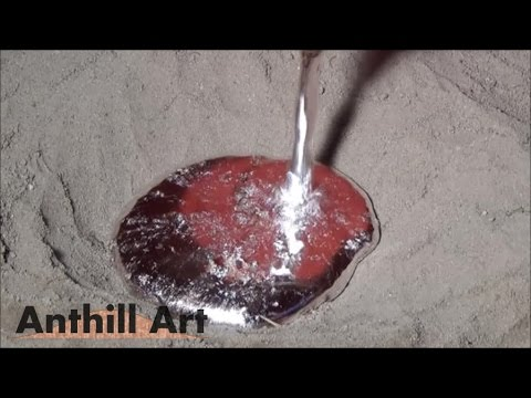Casting a Carpenter Ant Colony with Molten Aluminum (Cast #042)