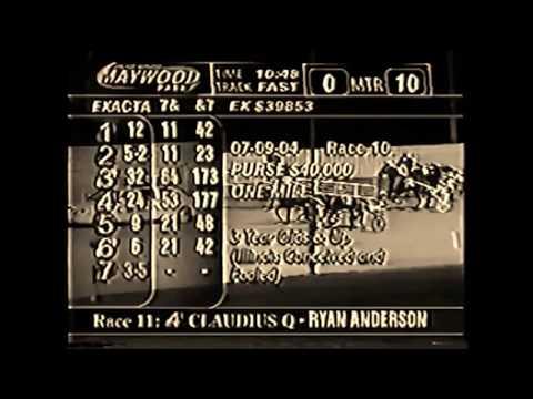 2004 Maywood Park TASER GUN Egyptian Stake IL Bred Andy Miller