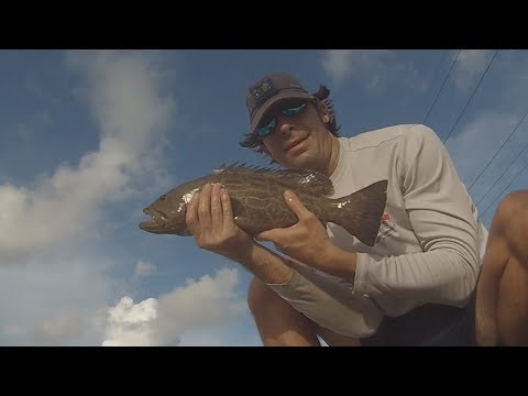 Bridge Fishing - Grouper