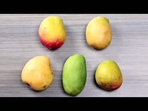 5 Popular Varieties of Mangoes in India