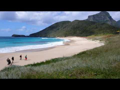 blinky beach lord howe island