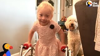 Dog Was SO Proud When Her Human Sister Finally Walked  | The Dodo