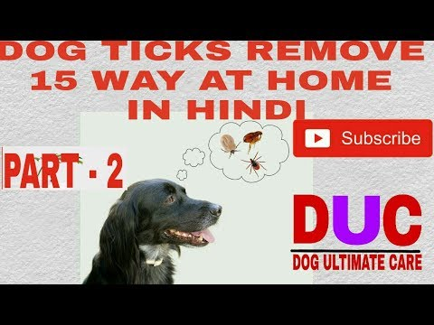 Dog ticks removing 15 way at home ! Part -2 ! In Hindi ! Dog Ultimate Care