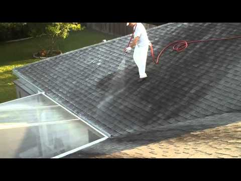 Shingle Roof Cleaning Palm Harbor Florida 727.542,2946