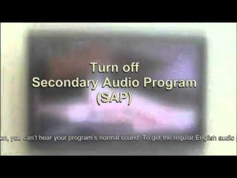 Secondary Audio Program (SAP)