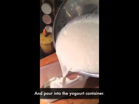 Making Yogourt in the Cuisinart Yogourt Maker