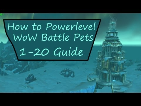 How to Powerlevel WoW Battle Pets from 1-20