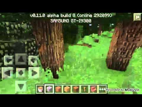 Minecraft pe 0.11.0 build 8 (multiplayer)