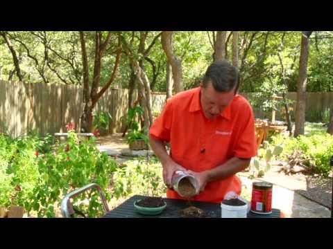 Gardening Tips : Potting Soil Recipe