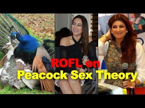 Xxx Mp4 क्या है 39 Peacock Sex Theory 39 का वायरल सच Twinkle Sonakshi ने बनाया मजाक 3gp Sex