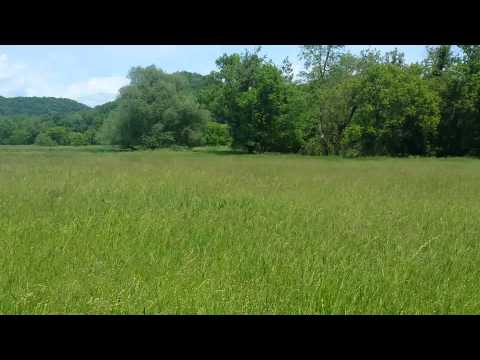 R-1164 - organic land & farm in Wisconsin for sale 4 of 4 videos