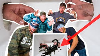 GUESS What You're TOUCHING in MEXICO! (Venomous Creatures)