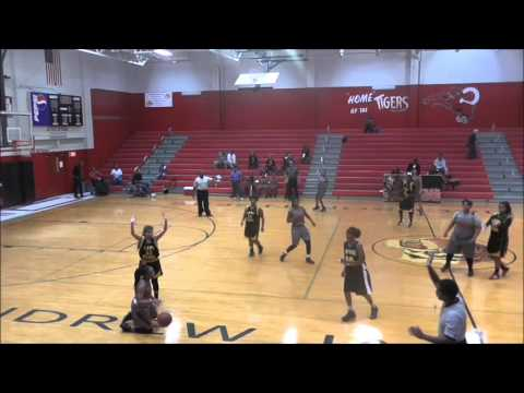 Lady Tigers vs Englewood - Rogers #23