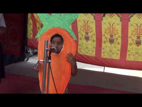 FANCY DRESS COMPETITION 2013   UKG STUDENT AS A CARROT