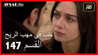 حب في مهب الريح - الحلقة 147