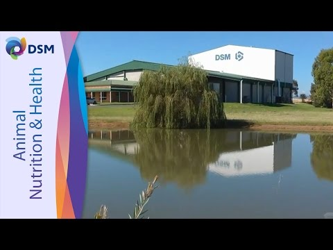 DSM Nutritional Products Australia - Premix Production & Quality Testing
