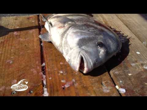 Cleaning Sheepshead with Captain Sonny Schindler